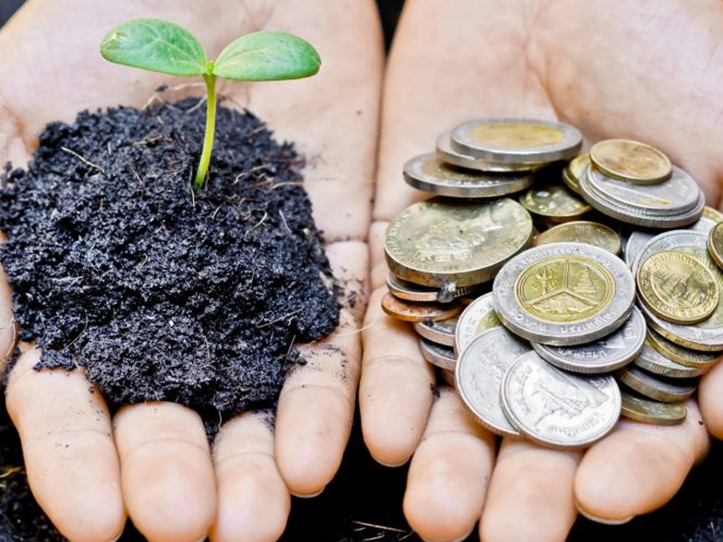 Nova economia: uma introdução ao capitalismo consciente